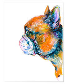 Poster Red Fawn Frenchie