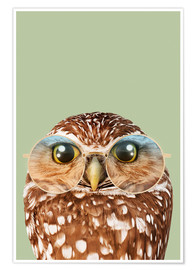 Poster HIPSTER OWL