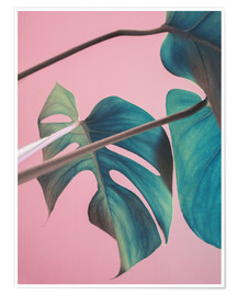 Poster  Feuilles de monstera sur fond rose - Emanuela Carratoni