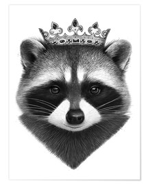 Poster King raccoon