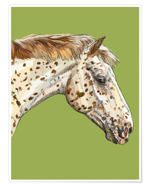 Poster  White horse portrait on green - Kidz Collection