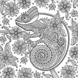 Coloriage Anti Stress Danse.Posters A Colorier Cameleon Fantastique