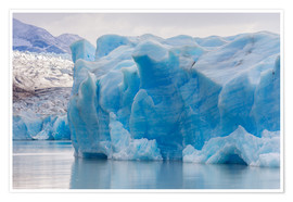 Poster  Iceberg at Gray Glacier, Patagonia, Chile - Circumnavigation