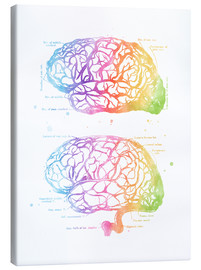 Toile  Human Brain Anatomy - Mod Pop Deco