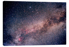 Tableau sur toile  The Summer Triangle - Science Source