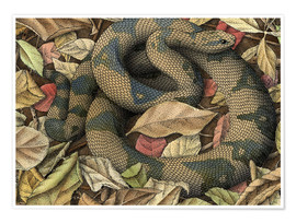 Poster  Snake in autumn leaves