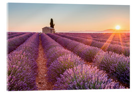 Verre acrylique  Valensole Plateau, Provence, France. Sunrise in a lavender field in bloom with lonely rural house an - age fotostock