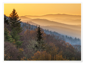 Poster Parc national des Great Smoky Mountains