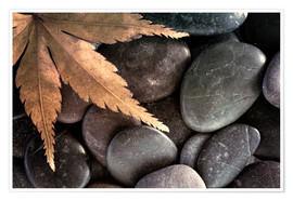 Poster  Maple leaf on rocks - Don Paulson