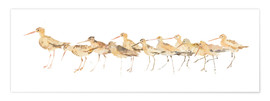 Poster Watercolor Sandpipers Panel