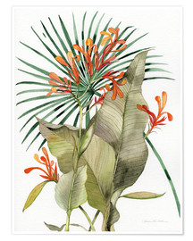 Poster  Flame Lily - Kathleen Parr McKenna