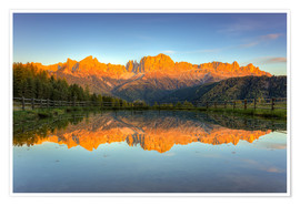 Poster  Alpenglow on the rose garden in the Dolomites in South Tyrol - Michael Valjak