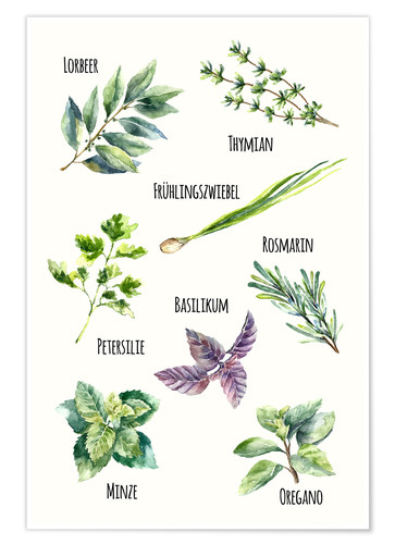 Poster Herbes aromatiques (allemand)