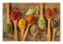 Elena Schweitzer - Colorful spices in wooden spoons
