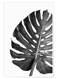 Poster Monstera noir 03